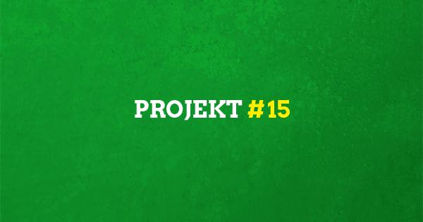 # 15 | Bezahlbarer Wohnraum für alle